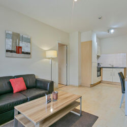 double sofa and coffee table in serviced apartment in brussels city centre