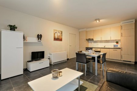 serviced apartment with cable television and fully equipped kitchen