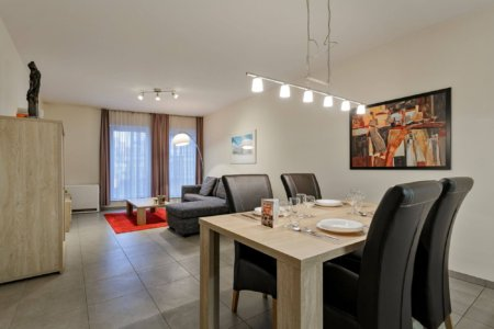 spacious dining and living space in furnished one bedroom apartment between European Commission and City Centre Brussels