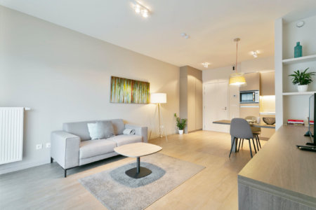 zilverhof one bedroom apartment with spacious sofa and art