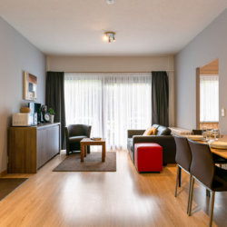 dunant gardens one bedroom apartment living space