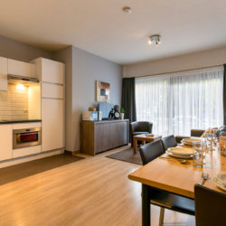 dunant gardens one bedroom apartment living dining room