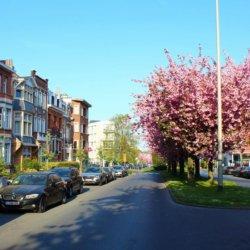 quiet neighbourhood street of woluwe-saint-lambert