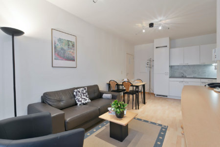 sofa an dining area in one bedroom furnished apartment near european commission