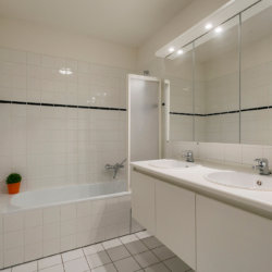 double basin in bathroom with shower and bathtub plus bi-weekly cleaning