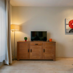 cable television in bbf serviced apartment