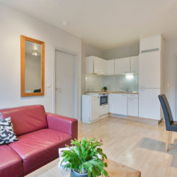 serviced one bedroom bbf apartment with fully equipped kitchen