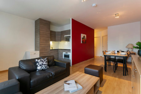 living space with fully equipped kitchen in furnished two bedroom apartment next to european commission