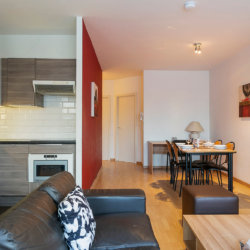 spacious serviced apartment with fully equipped kitchen and cleaning in schuman