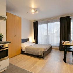 spacious studio apartment near european commission opposite park cinquantenaire