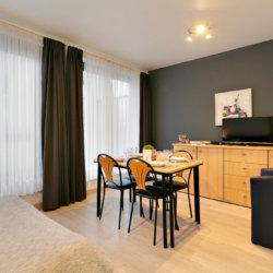 furnished studio apartment opposite cinquantenaire park brussels