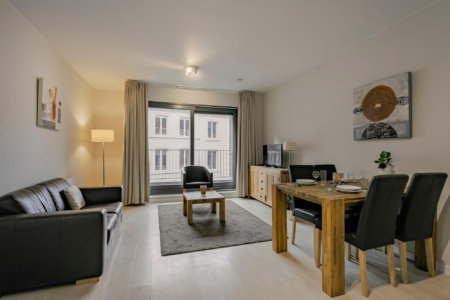 spacious one bedroom furnished apartment living room