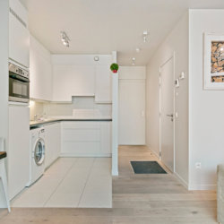 fully equipped kitchen with washing machine and dishwasher