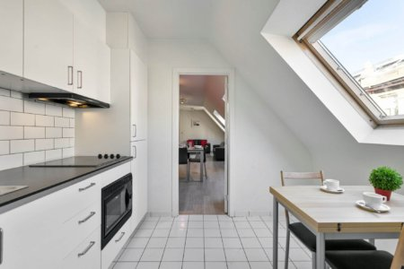 fully equipped kitchen in bbf serviced apartment in brussels