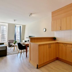 fully equipped kitchen and living space in louise brussels apartment