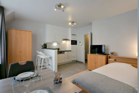 serviced studio apartment