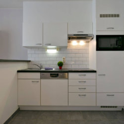 fully equipped kitchen with dishwasher in bbf studio apartment