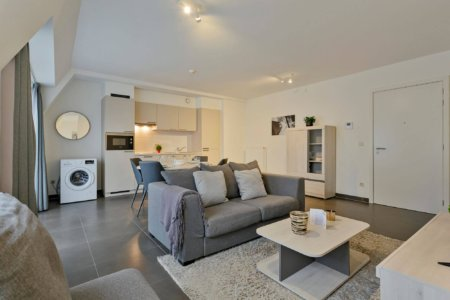 living room with sofa in serviced bbf apartment