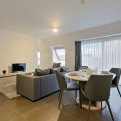 living room with sofa and cable television in serviced bbf apartment
