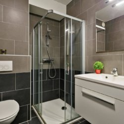 bathroom with shower in serviced one bedroom apartment in west Brussels